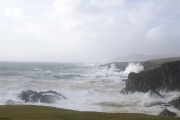 ashleam-storm